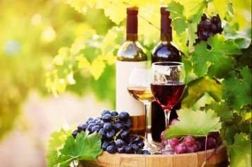 Private Wine Tours Melbourne