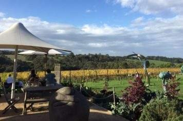 Mornington Peninsula private Winery tour