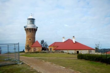 Private tour to Ku-ring-gai and Northern Beaches