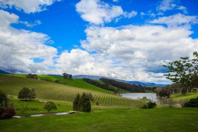 Group Winery Tours Yarra Valley
