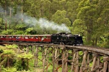 Puffing Billy with Healesville Wildlife Sanctuary Private Tour