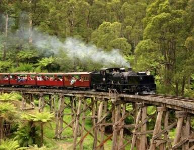Puffing Billy with Healesville zoo private tour
