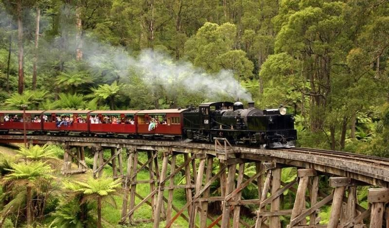 PUFFING BILLY WITH HEALESVILLE WILDLIFE SANCTUARY PRIVATE TOUR – PICTURE 1