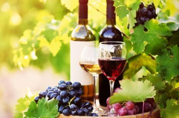 Private Yarra Valley Wine Tours