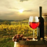 Bellarine Winery Private Tour - Photo 1