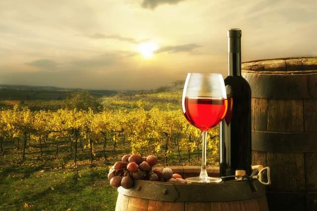 Bellarine Winery Private Tour – Photo 1